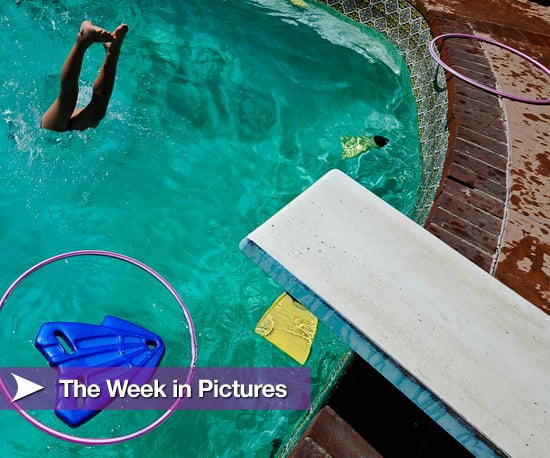 Pictures From the Week of August 23