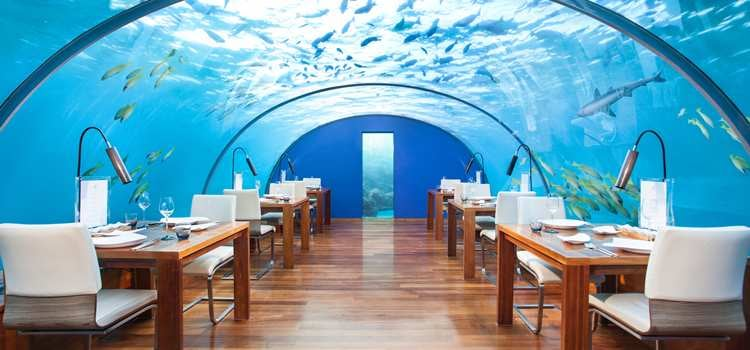 Eat Under the Sea