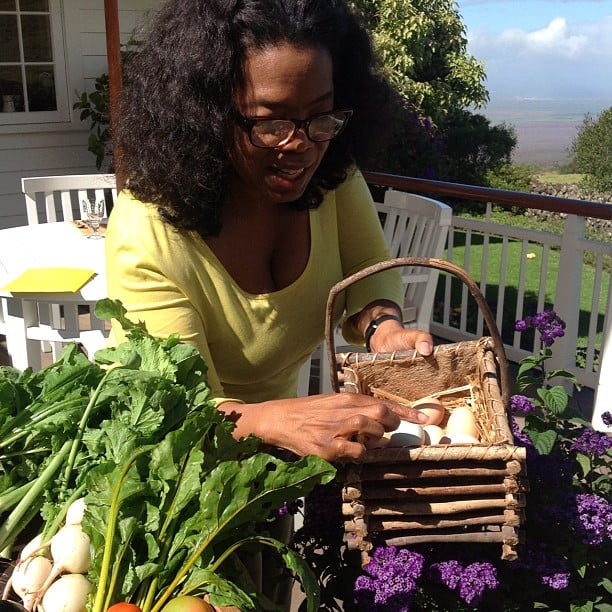 Oprah collected fresh eggs from her hens. Source: Instagram user oprah