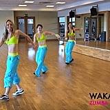 """Shakira's """"Waka Waka"""""""
