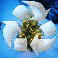 Don't Trash Your Tree