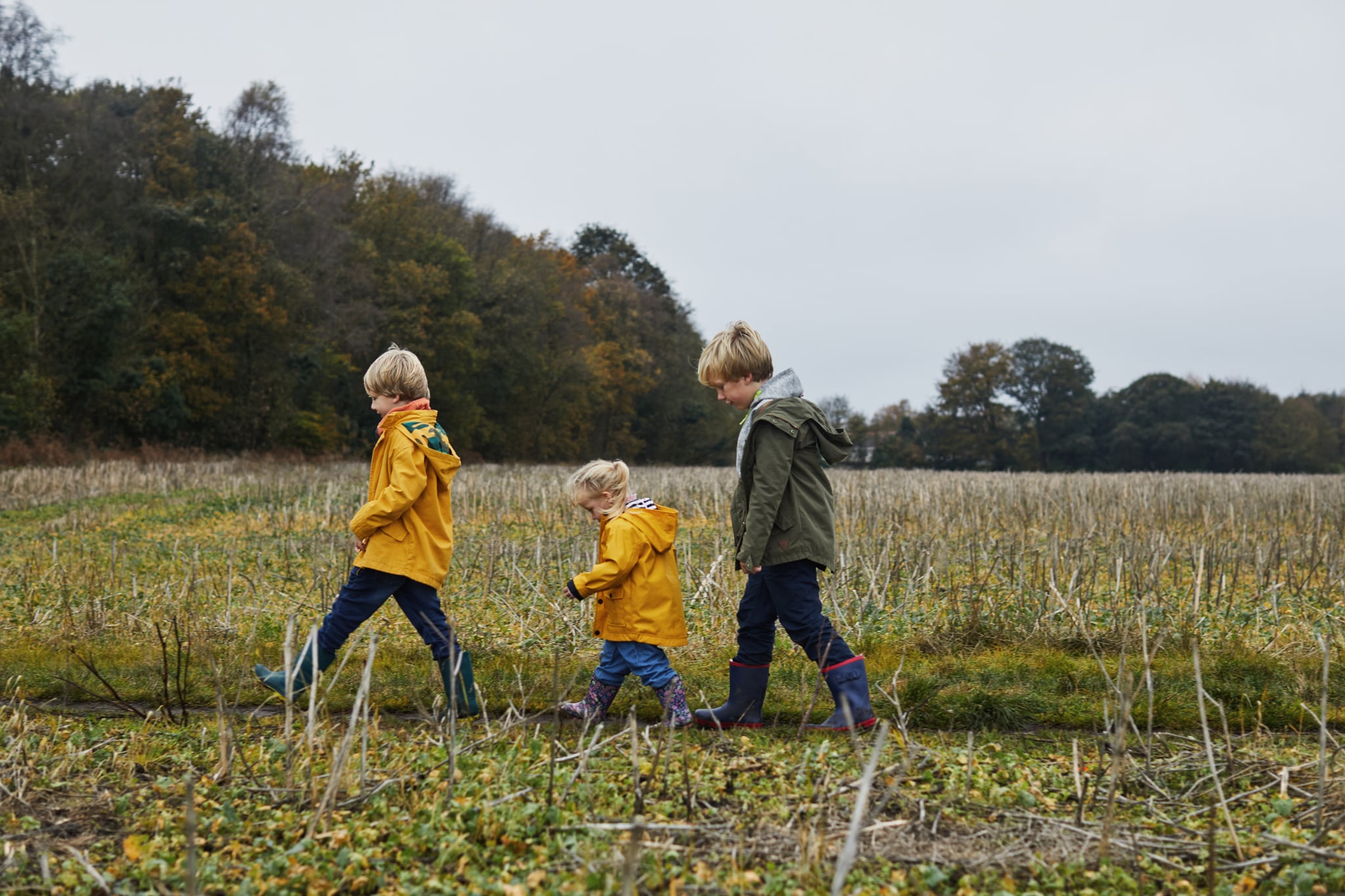 Three siblings walking though a field together