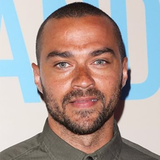 Jesse Williams and Minka Kelly Break Up