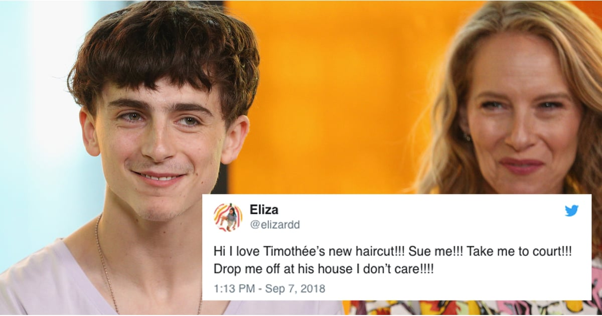 Reactions To Timothe Chalamets Haircut September 2018 Popsugar
