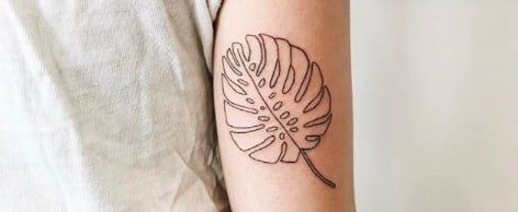 Swiss Cheese Plant Monstera Deliciosa Tattoo Ideas