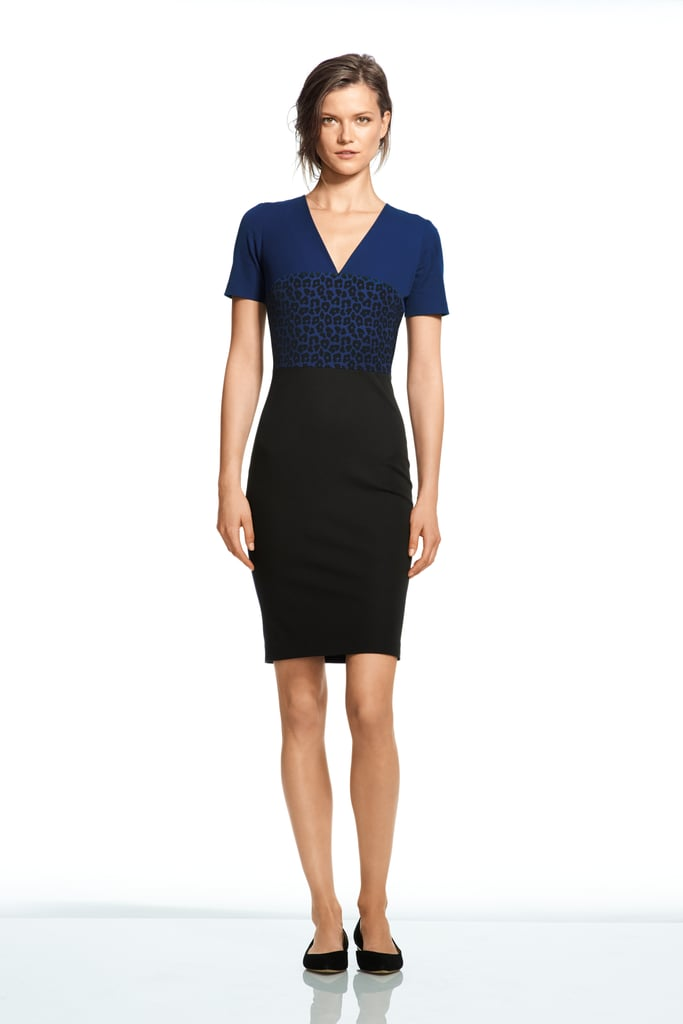 Roland Mouret For Banana Republic Leopard Vee Dress