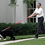 Pictures of Bo and Sunny Obama