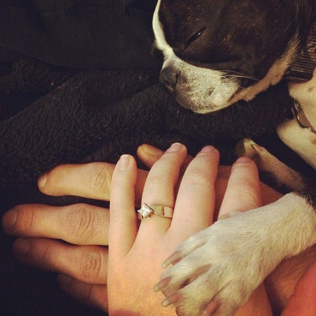 Puppy Love | Real Girl Engagement Rings From Instagram | POPSUGAR