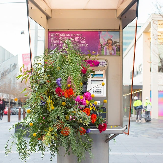 Canberra Flower Bomb for The Floral Society July 2017