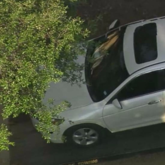 2-Year-Old Girl and 16-Month-Old Boy Found Dead in Hot Car