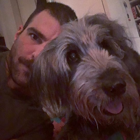 Zachary Quinto's Dog Dies