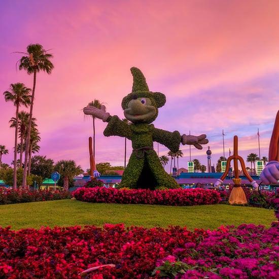 Disney Parks After Dark Photos