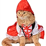 Red Riding Hood Cat Costume