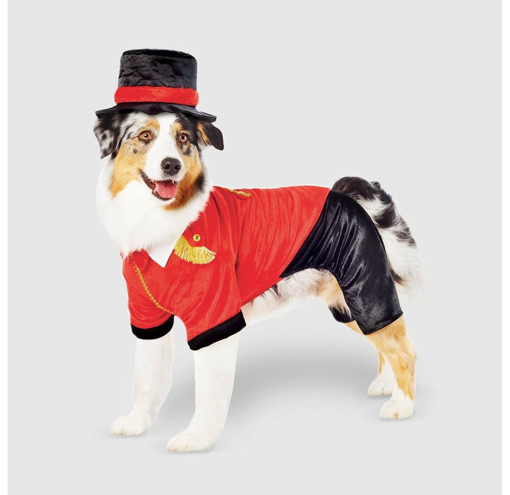 Ringmaster Dog Costume