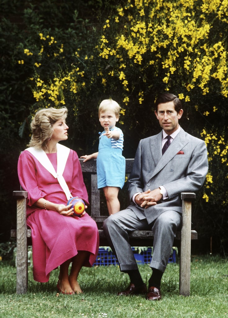 To celebrate Prince William's second birthday in 1984, the family posed in the gardens of Kensington Palace, where Princess Diana casually held a bright ball in her lap.