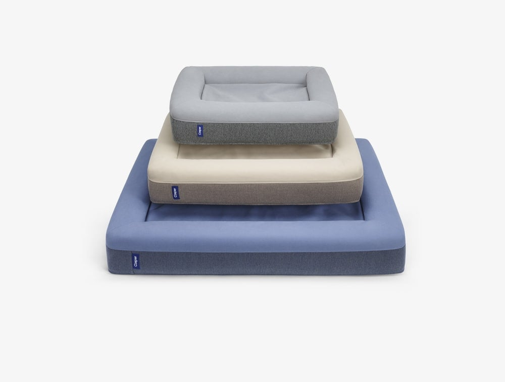 Casper Dog Bed ($125)