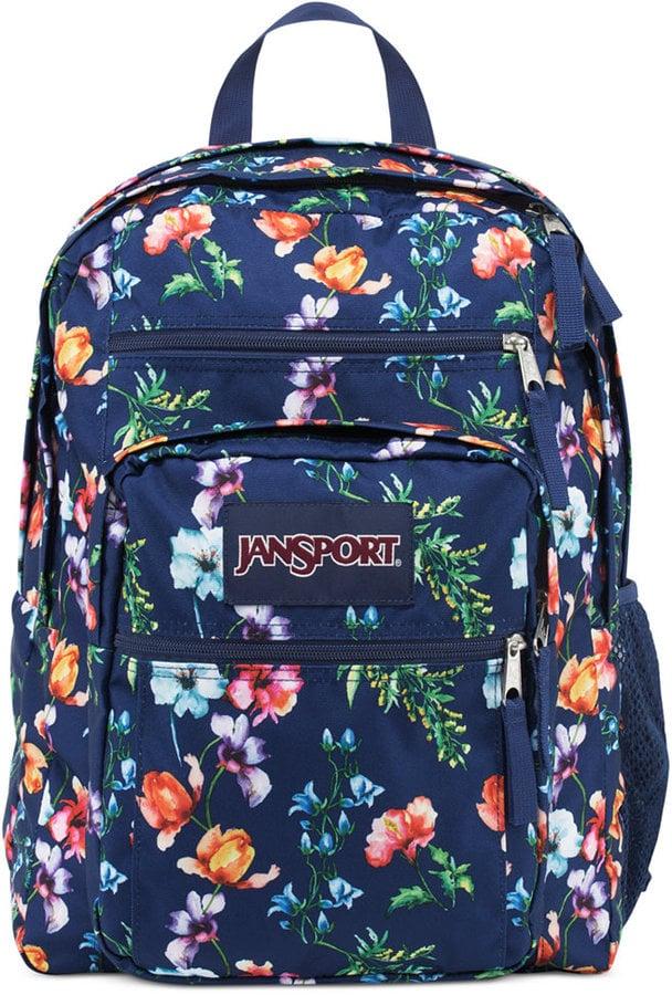 JanSport Mountain Meadow Backpack