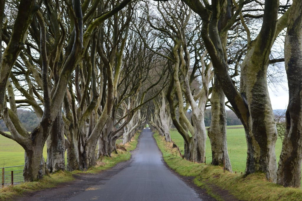 13 Haunting Places in Ireland to Visit in This Lifetime