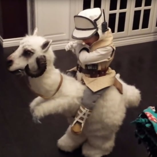 Homemade Star Wars Tauntaun Costume