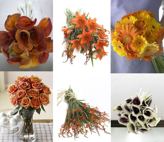 Organic Bouquet Giveaway...We Have a Winner!