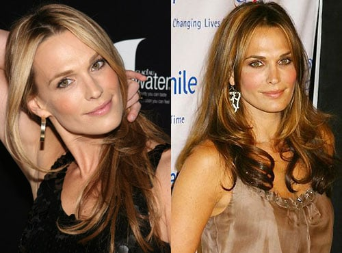 Do You Like Molly Sims Better as a Blonde or Brunette?