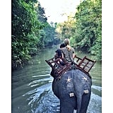 Ride an Elephant in Myanmar