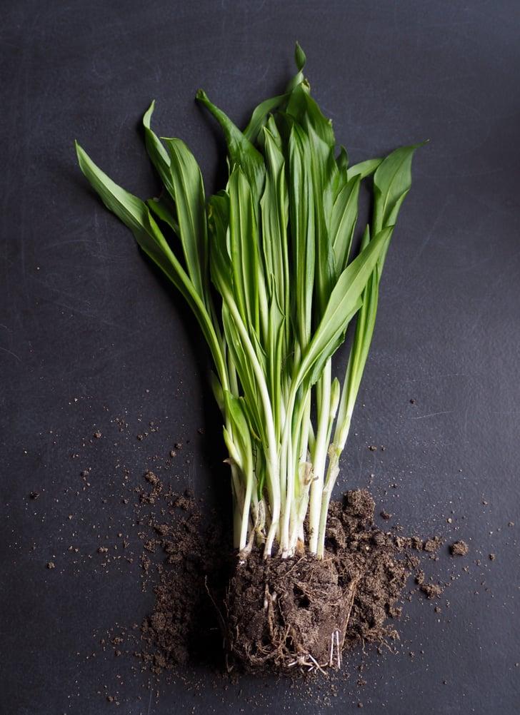 Garlic | Mosquito-Repelling Plants | POPSUGAR Home Photo 14