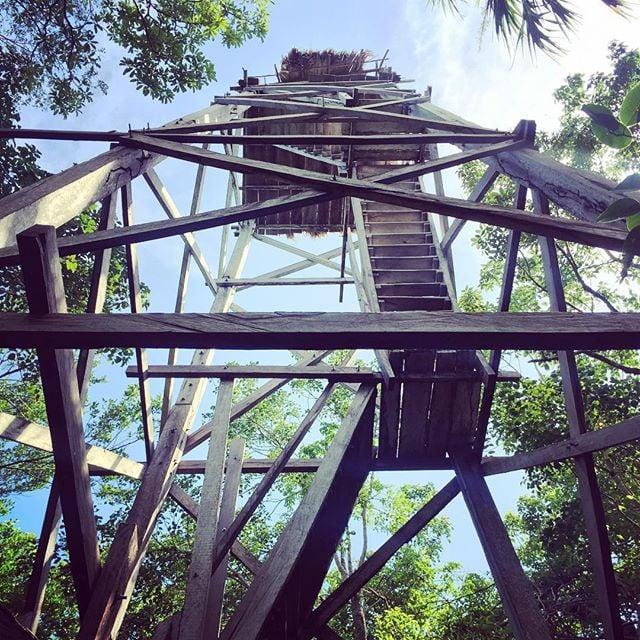 The Observation Tower at Sian Ka'an
