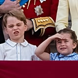 When He Attended Trooping the Colour