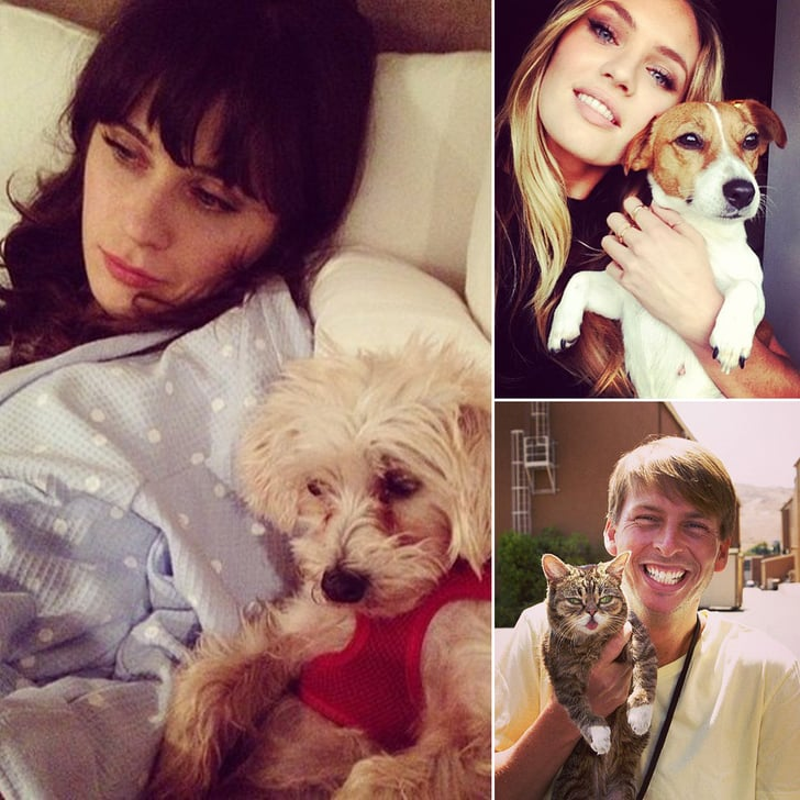 Adorable May Pics of Our Favorite Celebs and Animals