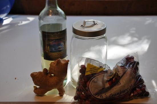 Cranberry Ginger Sorbet