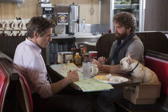 Movie Preview For Due Date Starring Zach Galifianakis and Robert Downey Jr.