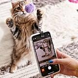 Kikkerland Design Kitty Phone Clip