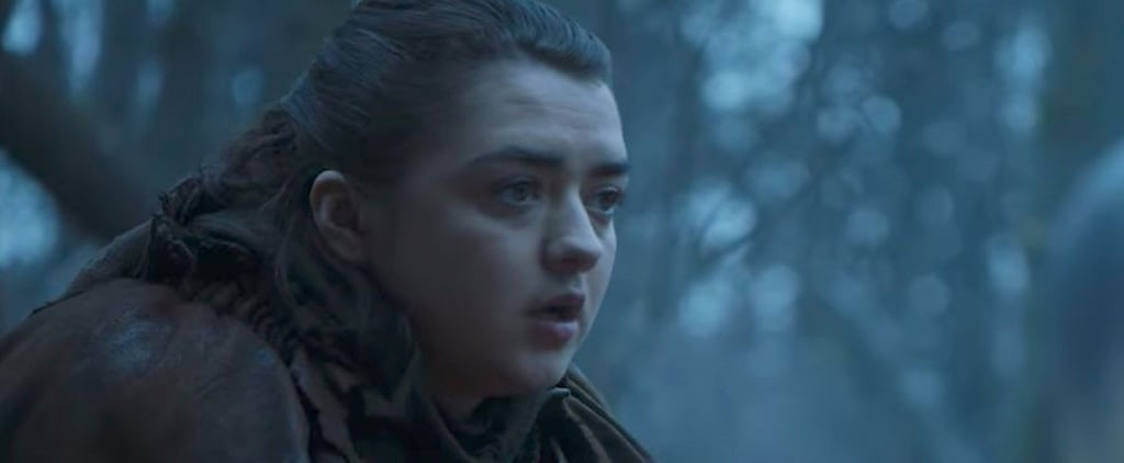 Game of Thrones Broke Everyone's Hearts Last Night With This Emotional Arya Scene