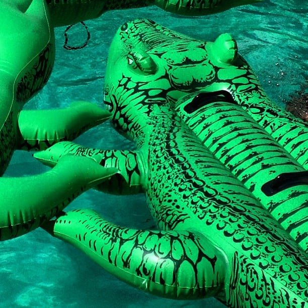 What else but alligator rafts at the Lacoste party?