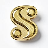 "What Is Your ""S""? Logo Pin"