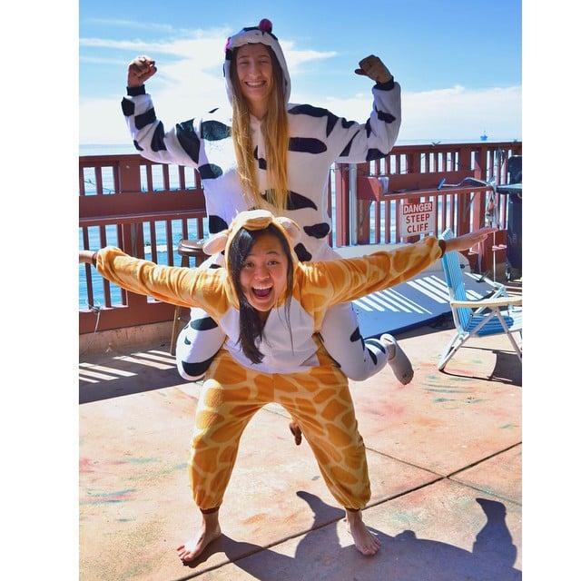 Cow and Giraffe