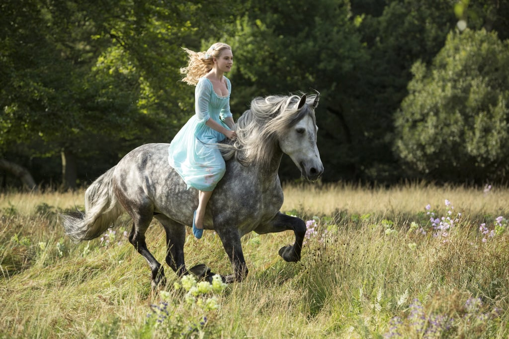 One day, Cinderella goes for a ride in the fields.