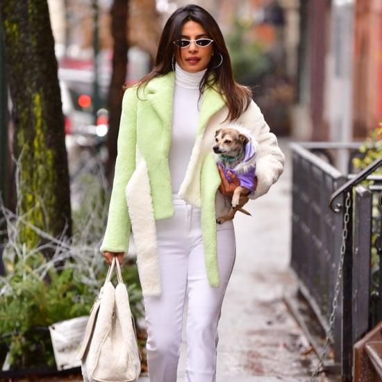 بريانكا شوبرا تظهر بسترة فرو خضراء في نيويورك خلال ديسمبر 20