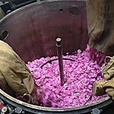 The Fragrance-Making Process