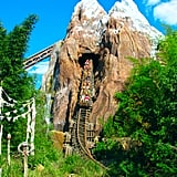 Expedition Everest — Legend of the Forbidden Mountain