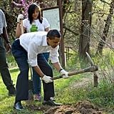 Planting a tree at the Kenilworth Aquatic Gardens in 2009.