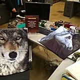 Gina's (Chelsea Peretti) desk is pretty much exactly as you'd expect it to be.