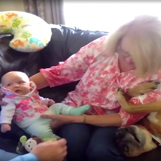 Viral Video of Dog Trying to Be a Baby