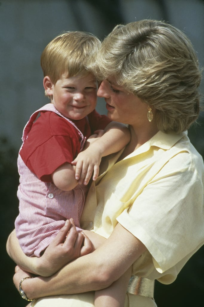 Prince Harry Carrying on Diana's Work