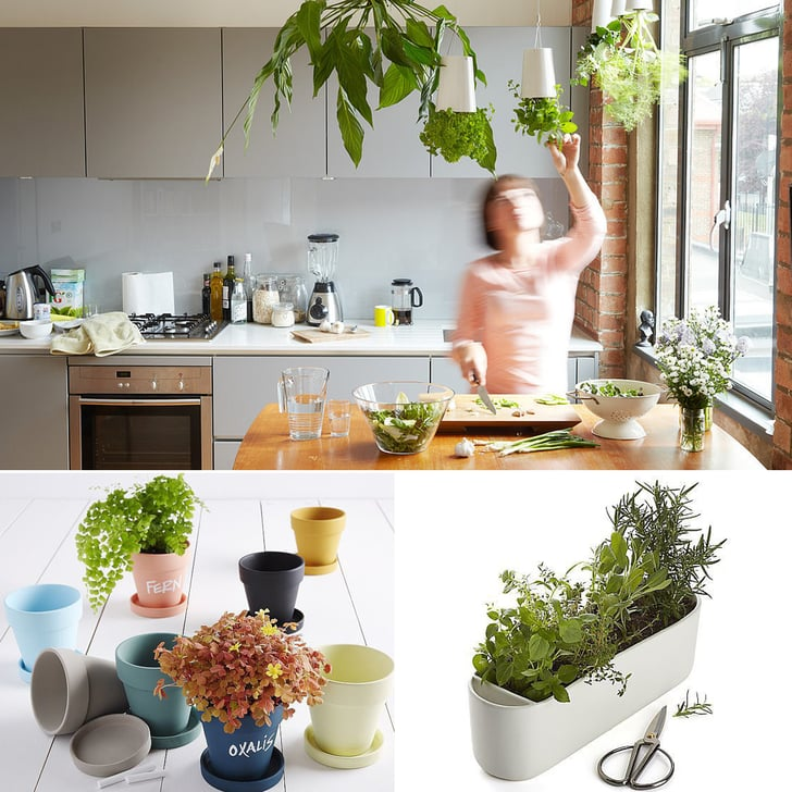 6 Cool Herb Gardens For Small Spaces