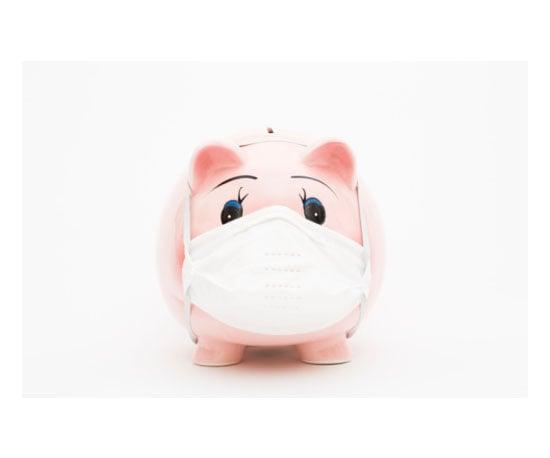 The H1N1 Virus (Swine Flu)