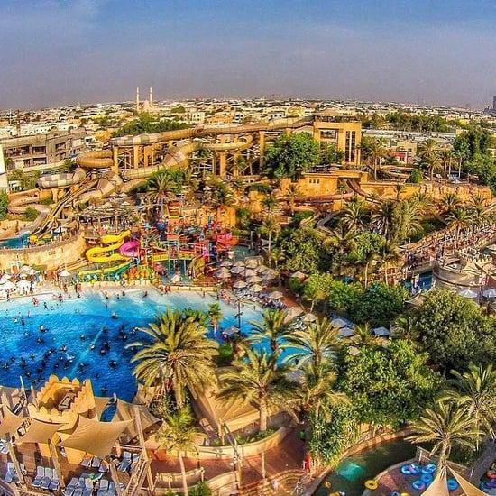 حديقة وايلد وادي المائية تعيد فتح أبوابها  في دبي من جديد