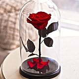 الوردة المحفوظة داخل قبّة زجاجيّة (بسعر 89$ دولار أمريكي؛ 327 درهم إماراتي/ريال سعودي)