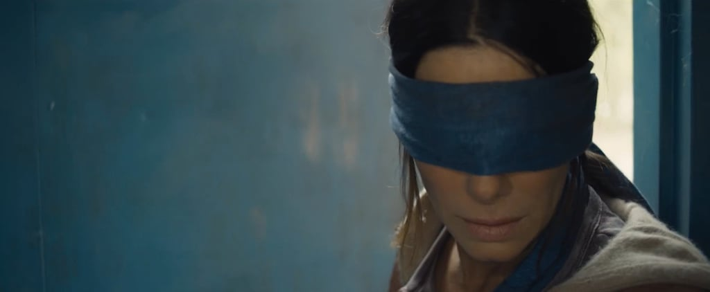 Bird Box Netflix Movie Memes
